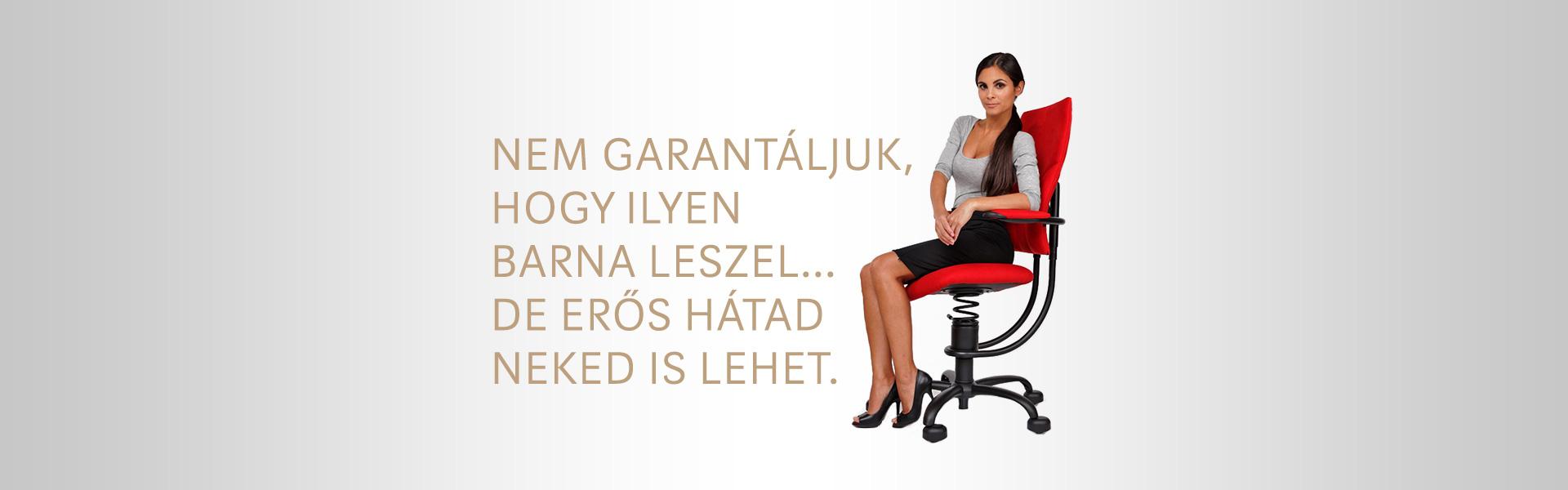 használt spinalis szék